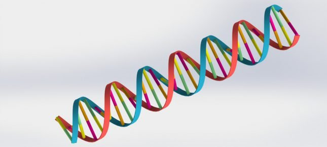 Double-Helix DNA